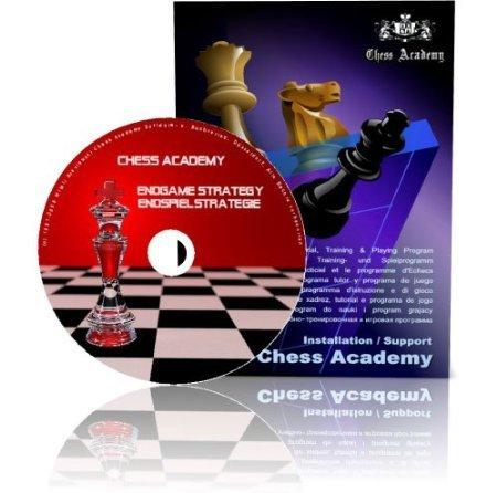 Chess Academy eBook+ Moderne Endspielstrategie